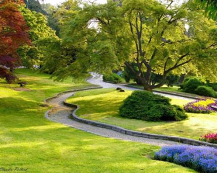 Discover the botanical garden on the banks of the Po