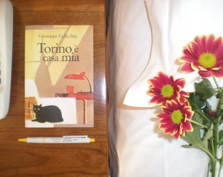 Torino is my home - Book hotel in Torino!
